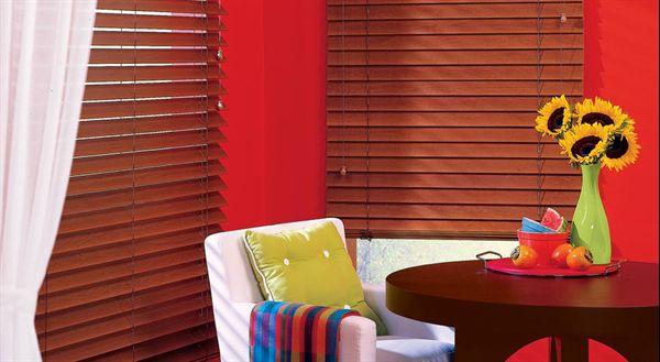Pleated blinds- arrangement