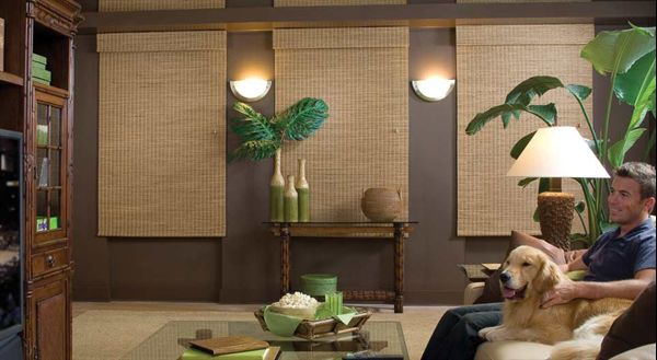 Hunter Douglas Provenance Woven Woods Lng Blinds